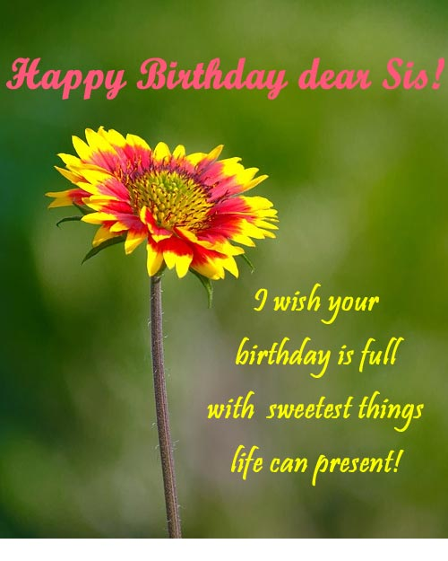best happy birthday flower image for dear sister