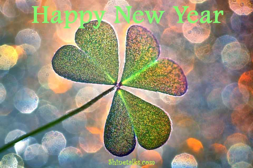 Best New Year Whatsapp and Facebook Status For