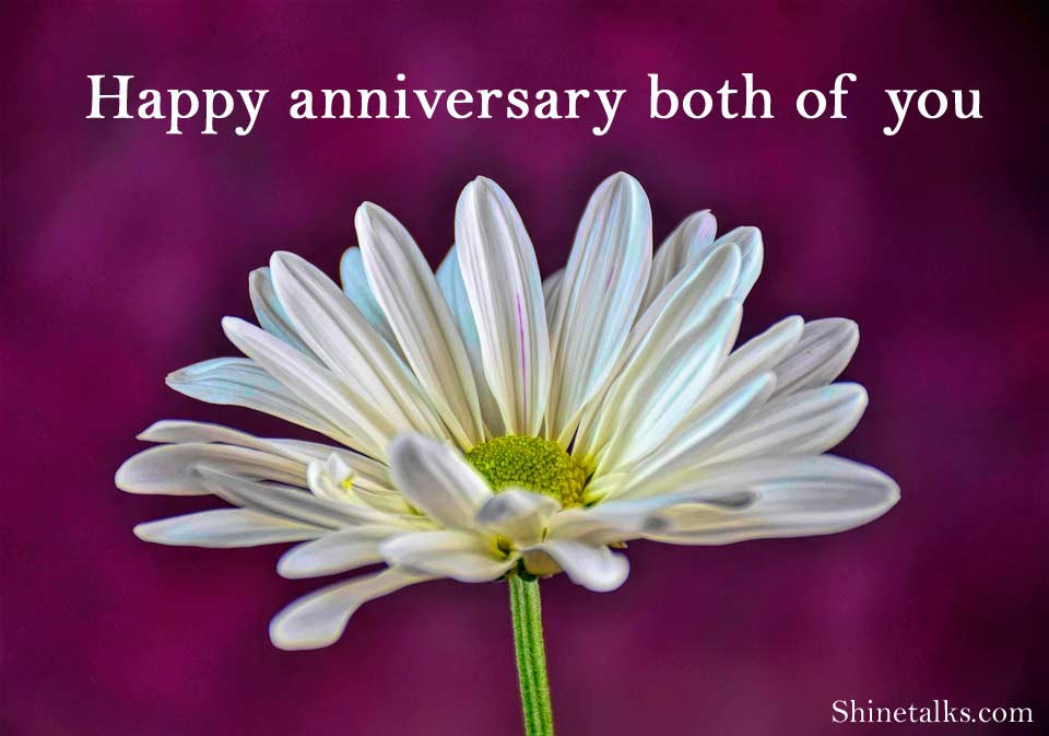 Best Anniversary Wishes Greetings Messages Quotes and Image