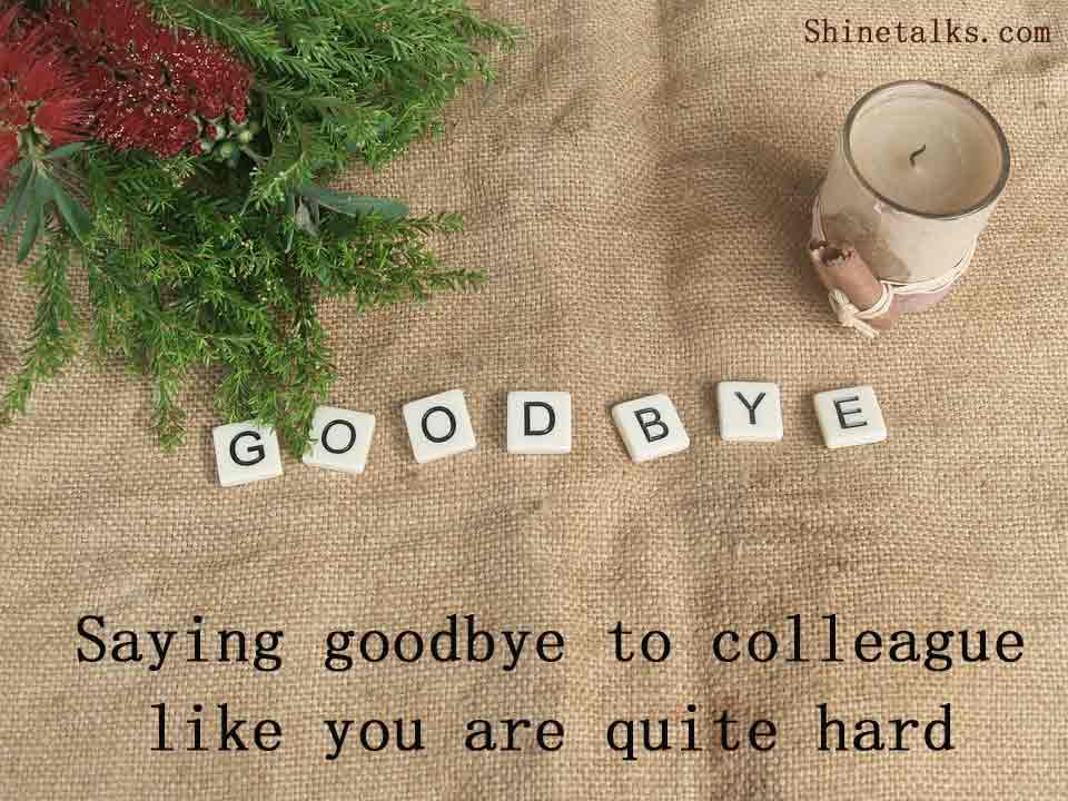 Goodbye Message When exit the Job Corporation or company