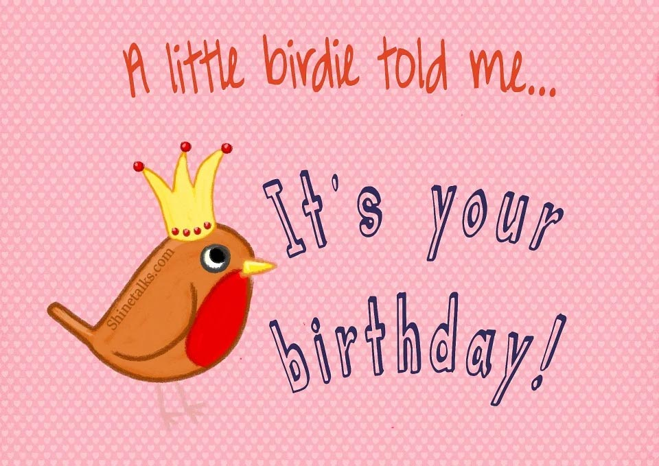 happy little bird birthday pics