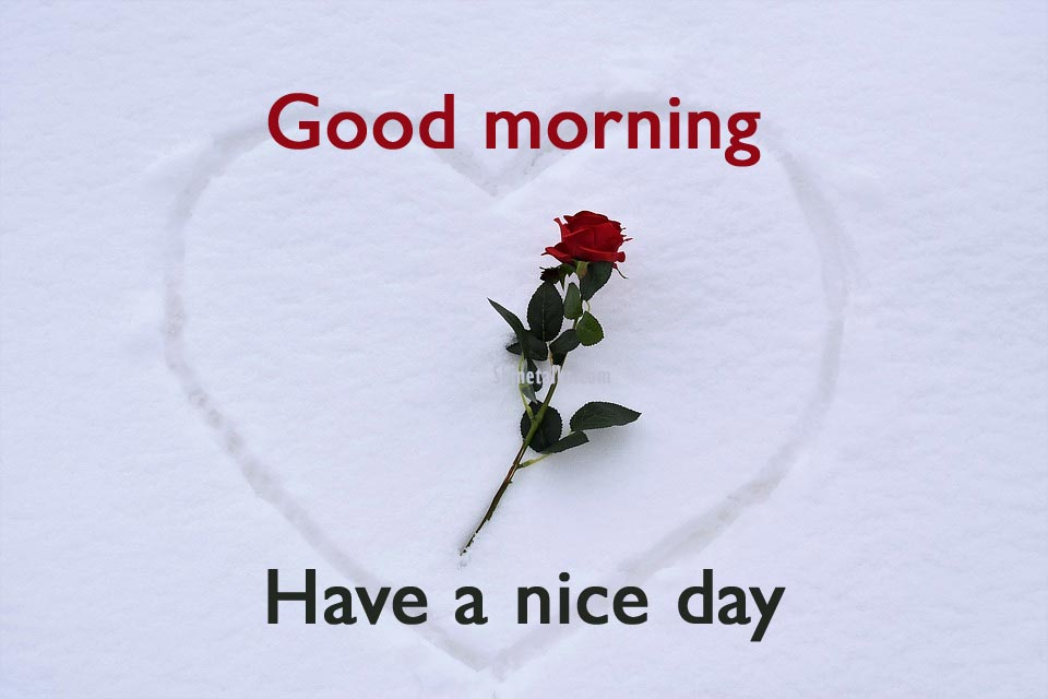 have a nice day msg