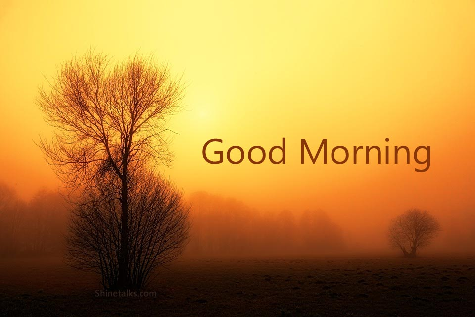 good morning winter messages and pics