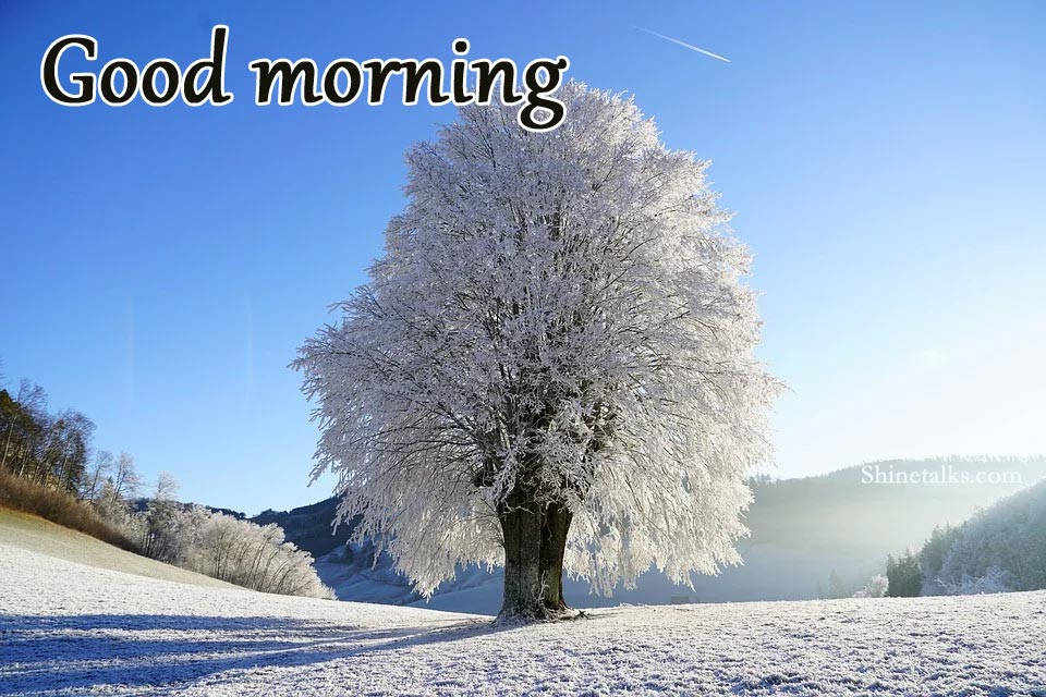 snow Good morning images 2021