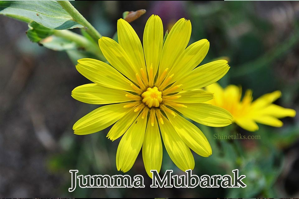 jumma day wishes images