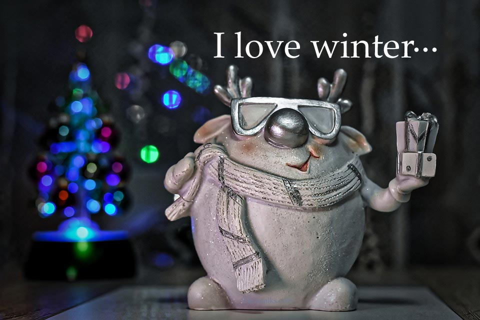 winter funny pictures