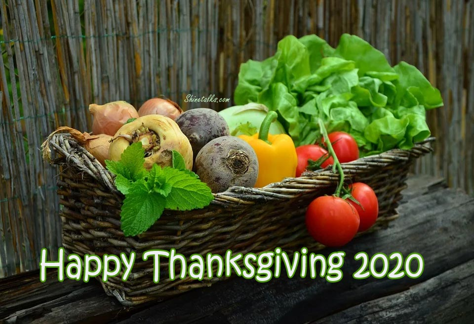 Wonderful thanksgiving day quotes 2020