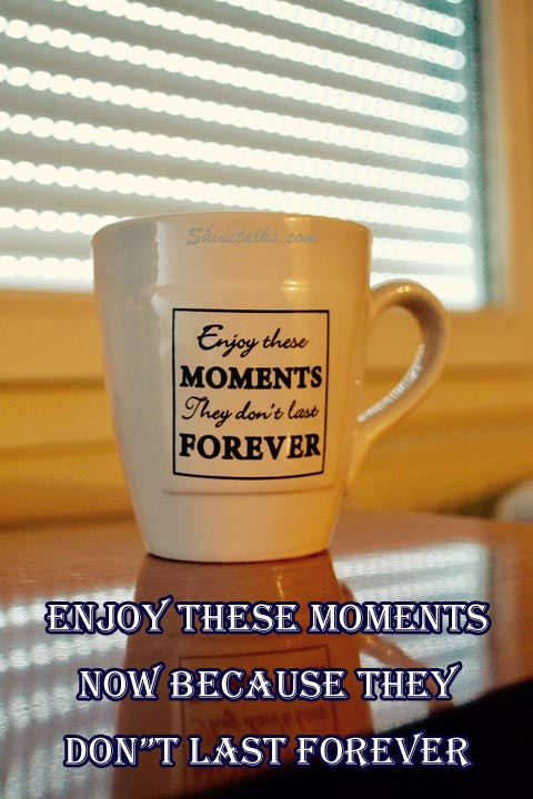 Enjoy the Moments quotes