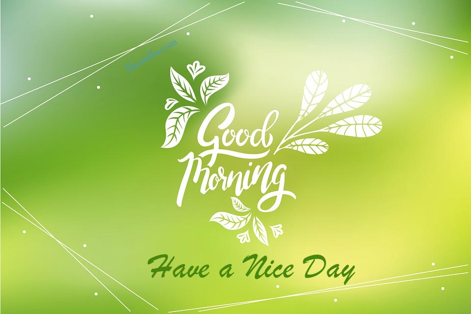 picture of Good morning have a nice day