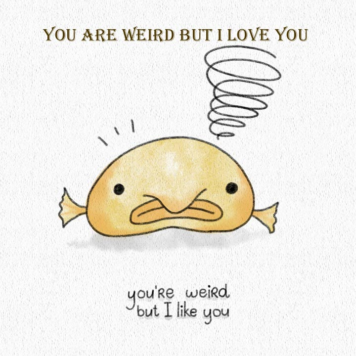 you are weird but i love you